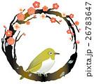 梅 鶯 春のイラスト 26783647