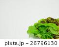 ベビーリーフミックス 野菜 26796130