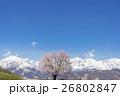 桜 26802847