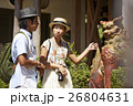沖縄を観光するカップル シーサー 26804631