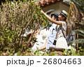 人物 沖縄 カップルの写真 26804663