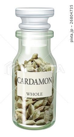 スパイス瓶_カルダモンのイラスト素材 [26804735] - PIXTA