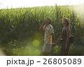 沖縄を観光する男女 さとうきび畑 26805089