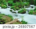 渓流 新緑 奥入瀬渓流の写真 26807567