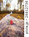 嫁 新婦 花嫁の写真 26812736