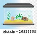 transparent aquarium vector illustration 26826568