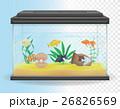 transparent aquarium vector illustration 26826569