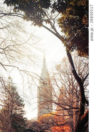 東京の夕景 26830517