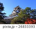 高知城と紅葉 26833393