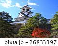 高知城と紅葉 26833397