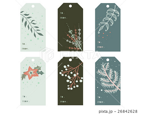 Hand Drawn of Christmas,Gift Tags.Foliage,Poinsettのイラスト素材 [26842628] - PIXTA