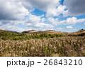 九州への旅、カルスト台地として知られています「平尾台」の風景を、ご紹介いたします。 26843210