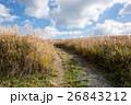 九州への旅、カルスト台地として知られています「平尾台」の風景を、ご紹介いたします。 26843212