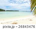 ニューカレドニア イルデパン 26843476