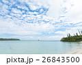 ニューカレドニア イルデパン 26843500