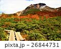 那須茶臼岳と紅葉 26844731