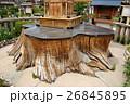 蒲田神社の1000年樟(大阪府大阪市) 26845895