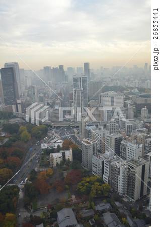 東京タワーからの眺め 曇りで視界が悪い日 perming 写真素材 26855441