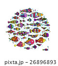 サカナ 魚 魚類のイラスト 26896893