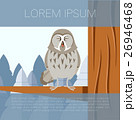 Grey Owl on the winter tree flat background 26946468