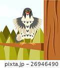 タカ ハヤブサ 鷹のイラスト 26946490