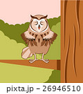 Happy Owl on the Tree flat background 26946510