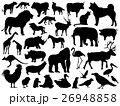 動物のシルエットイラスト 26948858