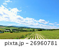 北海道 美瑛 丘の写真 26960781
