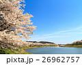 一目千本桜 白石川堤 桜並木の写真 26962757