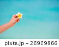 Beautiful frangipani flowers background turquoise 26969866