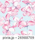 フローラル 花 プランツのイラスト 26988709