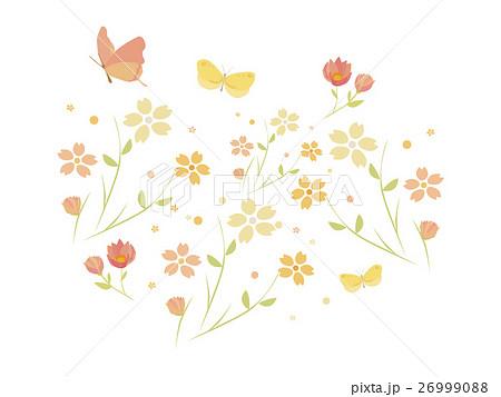 蝶々と花 26999088