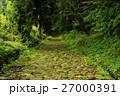 石畳 旧東海道石畳 山道の写真 27000391