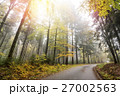 Autumn Forest with Road and Sun Beams 27002563