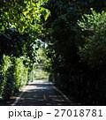 フットパス 小道 小径の写真 27018781