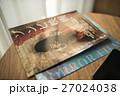 ゾンビ 映画 チラシの写真 27024038