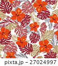 熱帯植物 トロピカルリーフ モンステラのイラスト 27024997