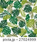 熱帯植物 トロピカルリーフ モンステラのイラスト 27024999