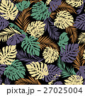 熱帯植物 トロピカルリーフ モンステラのイラスト 27025004