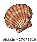 貝 貝がら 貝殻のイラスト 27076619