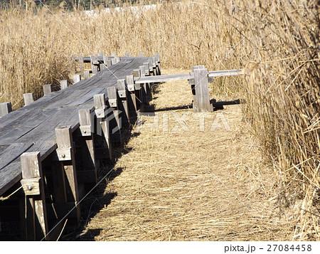谷津干潟公園の観察用木道 27084458
