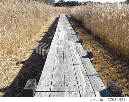 谷津干潟公園の観察用木道 27084461