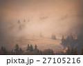 秋 霧 森林の写真 27105216