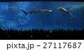 水族館 ジンベイザメ 鮫 人々 レジャー 観光 沖縄 南国 27117687