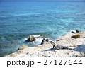 イスラ・ムヘーレス 海 イグアナの写真 27127644