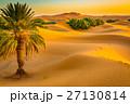 Sand dunes of the Sahara desert, Morocco 27130814
