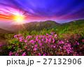 自然 フラワー 花の写真 27132906