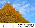 靖国神社の銀杏並木 27138558
