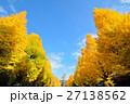 靖国神社の銀杏並木 27138562
