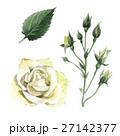 水彩画 イラスト 挿絵のイラスト 27142377